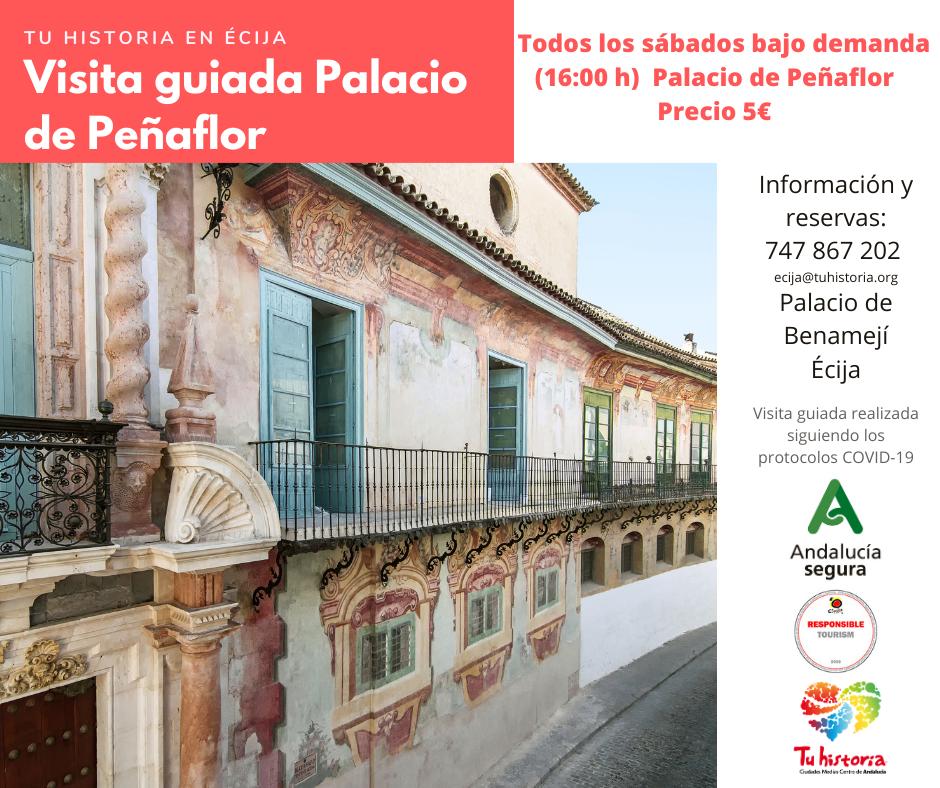 Visita guiada al Palacio de Peñaflor